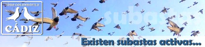 banner_subastas_activas