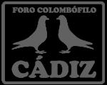 Forocolombofilocadiz.com